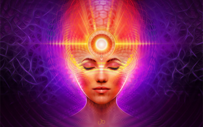 The Pineal Gland – Some Thoughts